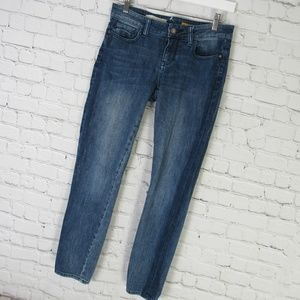 Pilcro And The Letterpress Jeans Womens 26 Skinny